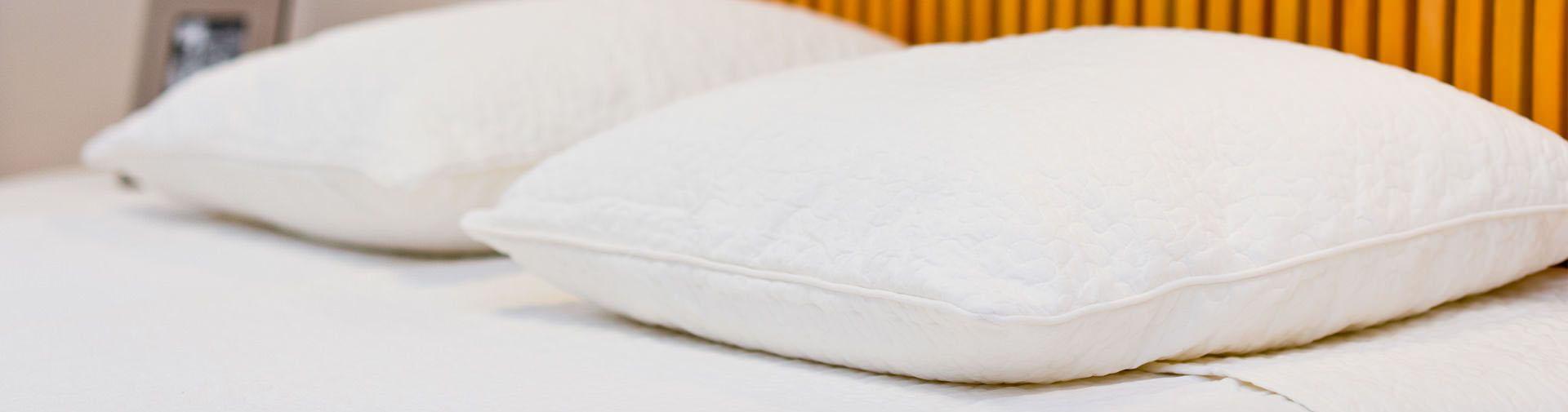 Cimici da letto coop gimar - Cimici letto punture ...